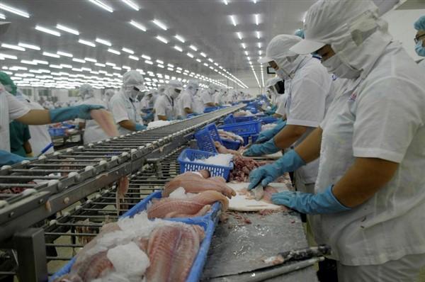 Xuất khẩu thủy sản sang Mỹ tăng trưởng khả quan
