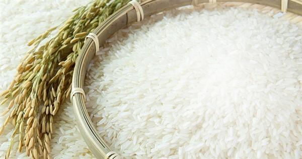 Giá lúa gạo hôm nay 19/6: Giá gạo nguyên liệu sụt giảm 300 đồng/kg