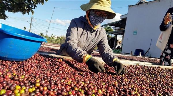 """Một năm EVFTA có hiệu lực, hàng """"made in Việt Nam"""" xuất khẩu sang châu Âu tăng mạnh"""
