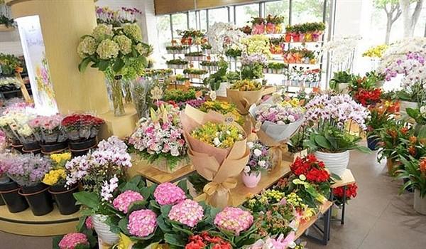 Sau nhiều tháng ế ẩm vì COVID-19, hoa Đà Lạt tăng giá mạnh trước ngày Phụ nữ Việt Nam