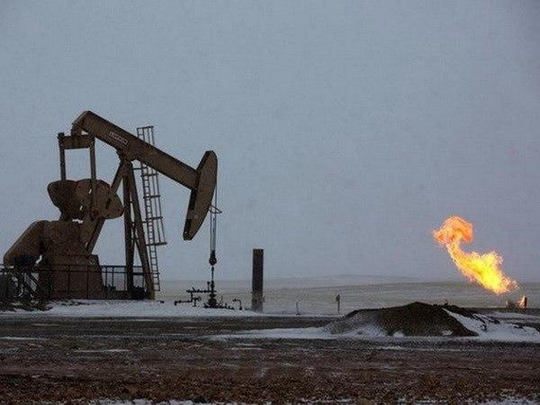 Giá xăng dầu hôm nay 2/8: Giảm trở lại trong phiên đầu tuần
