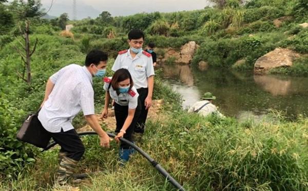 Yên Bái: Xử phạt 450 triệu đồng và đình chỉ hoạt động hai cơ sở chăn nuôi của Công ty TNHH Một thành viên Minh Hiền
