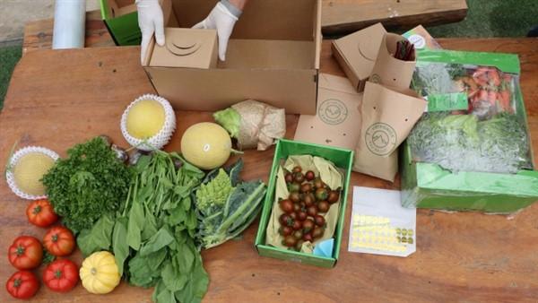 Lừa đảo, chiếm đoạt tiền hơn 300 người mua rau hữu cơ Đà Lạt